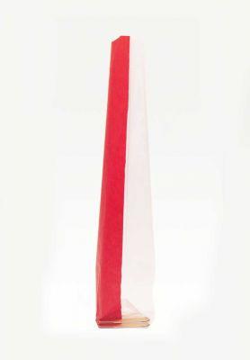 Medium Red Window Bag